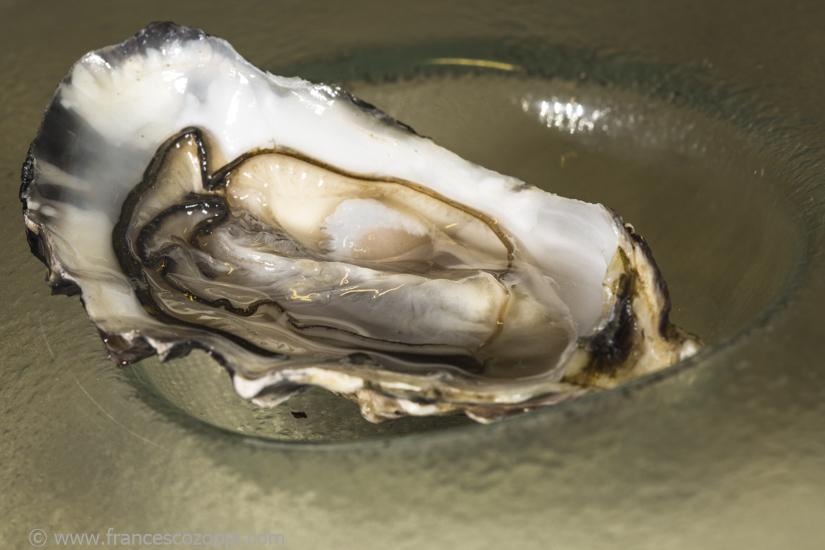 Oyster & Sambuca