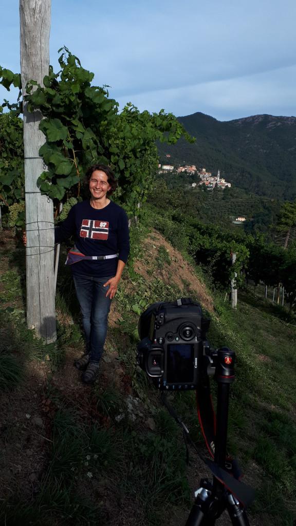 Bianchetta Genovese at farm Pino Gino